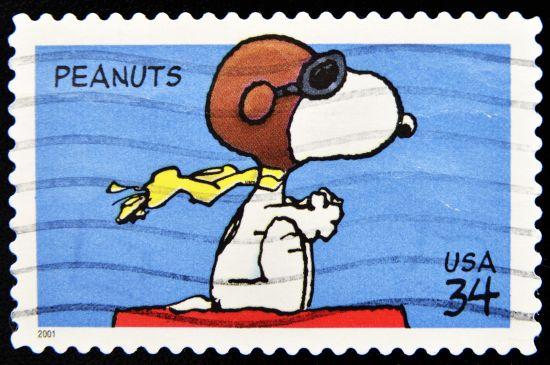 festa di compleanno snoopy dei peanuts