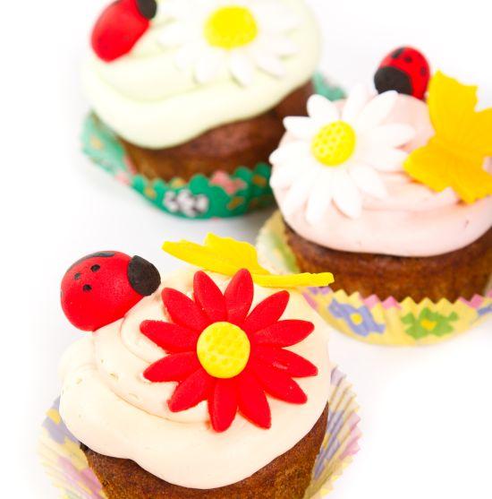 festa-di-compleanno-coccinella-bambini-muffin-cupcakes