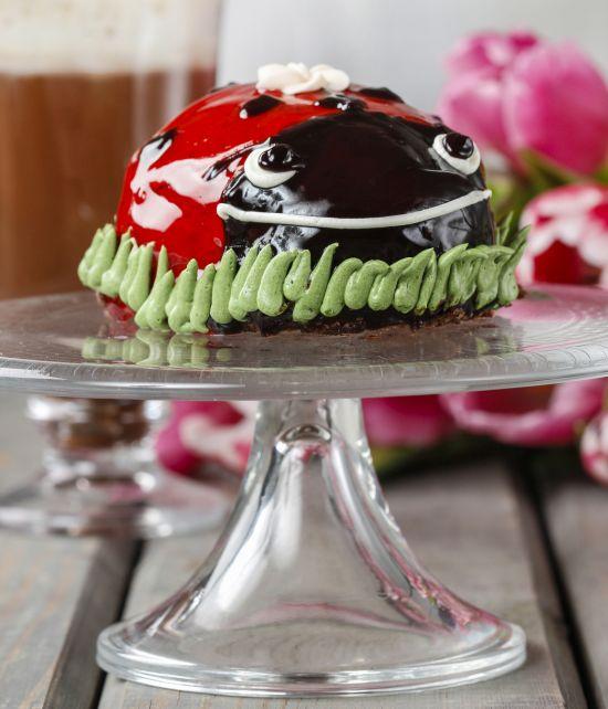 festa-di-compleanno-coccinella-bambini-tortafesta-di-compleanno-coccinella-bambini-torta