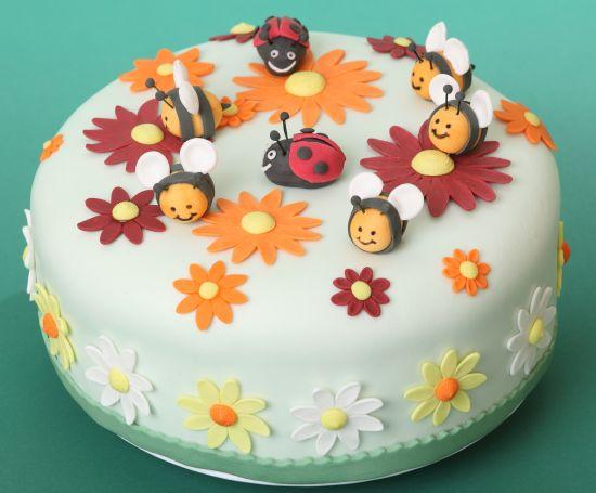 festa-di-compleanno-coccinelle-api-torta