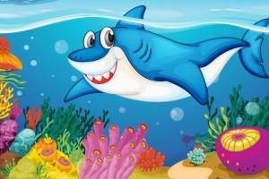 Festa di compleanno a tema squali
