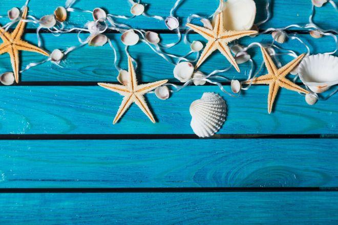 Decorare con le conchiglie feste e compleanni for Decorazioni con conchiglie
