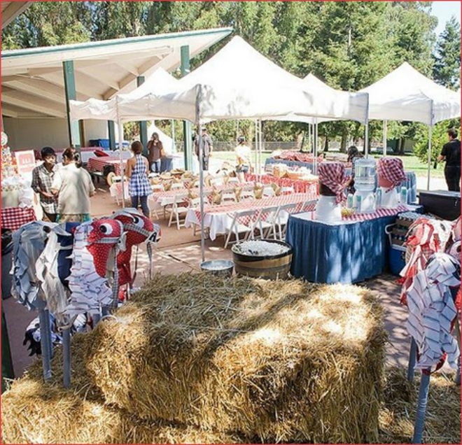 festa-compleanno-stile-western