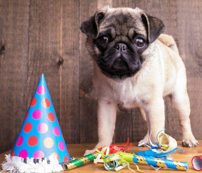festa-compleanno-tema-cappello